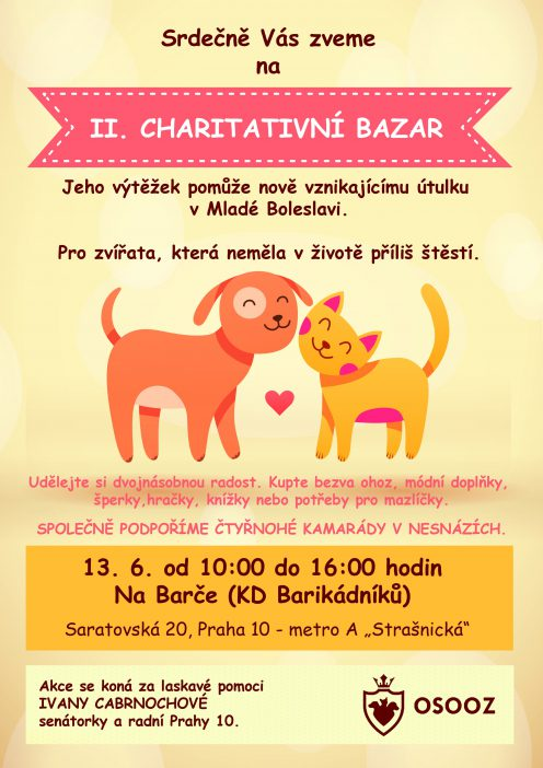 charitativni bazar